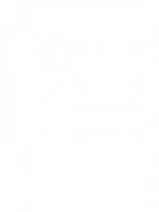 ENDLESS SUMMER MIXED PEONY BUNDLE 70cm