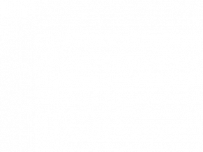 02. Large Japanese Azaleas – 2 Mixed Colour Evergreen Azaleas