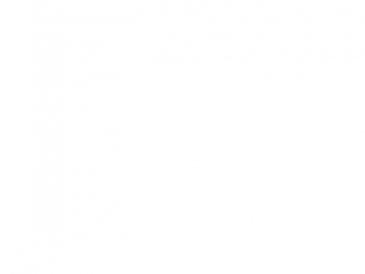 20. Upright Geraniums Mixed Colours Selection – 16 (4x4packs) Geraniums