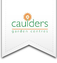 A new generation of garden centres